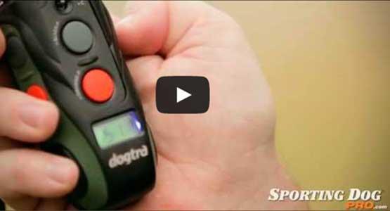 Dogtra SureStim H Plus Training Collar Video Review
