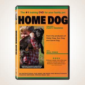 Home Dog: Volume 1 Training DVD