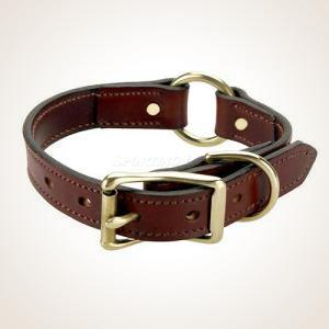 "Mendota 22"" Leather Hunt Collar"