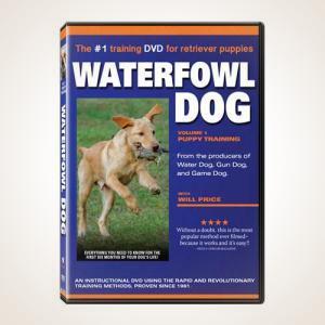 Waterfowl Dog Training DVD